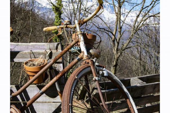 La bici della Certosa